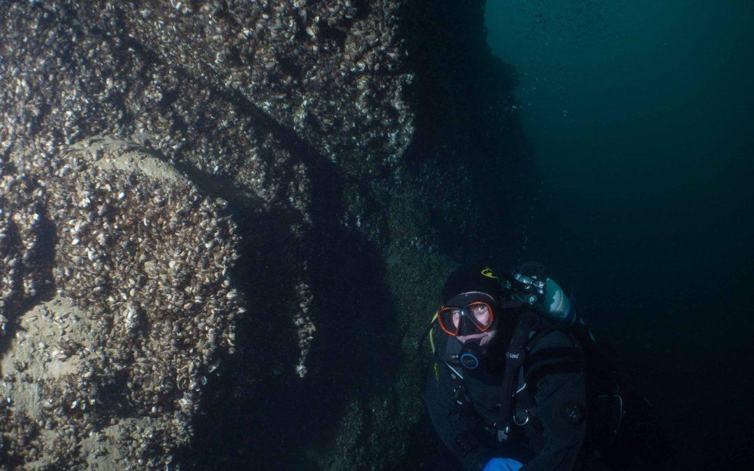 """Discover Local Diving """"Vinorama"""" Joël"""