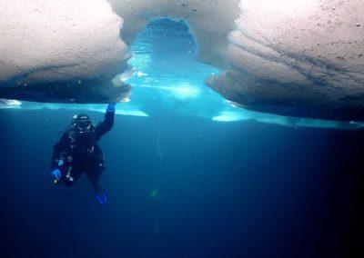 """Discover Local Diving """"Lioson"""" Laure, Marie-Hélène, Joël, Fabrice et Gabriel"""