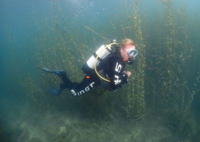 "Discover Local Diving ""Morges Circuit"" Véronique"