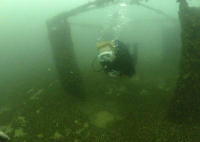 """Discover Local Diving """"St Prex Plage"""" Véronique"""