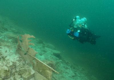 "Discover Local Diving ""Le Rosel"" Laure et Joël"