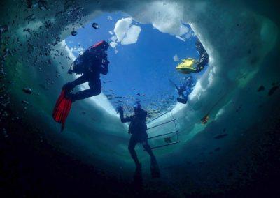 """Discover Local Diving """"Lioson"""" Scuba-Shop Villeneuve"""