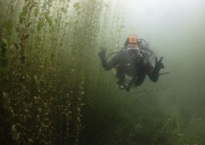 Discover Local Diving «Morges Circuit» Katharina